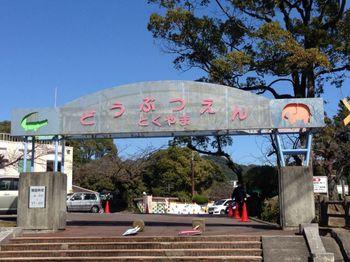 徳山動物園.jpg