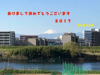 IMG_1721.jpg